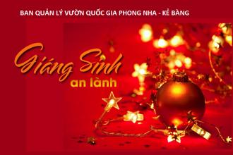 Thư chúc mừng Giáng sinh và Năm mới 2021